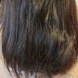 くせ毛の特徴