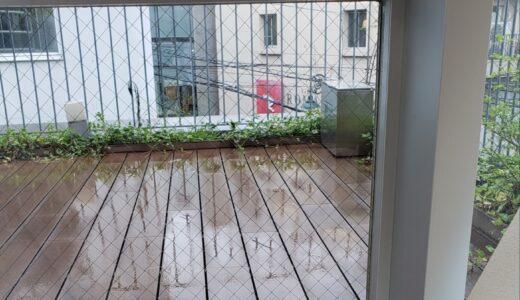 7月になってからずっと雨だな~。